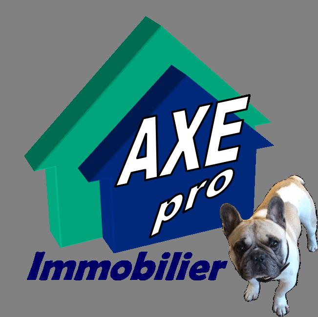 Logo Axe Pro Ouest