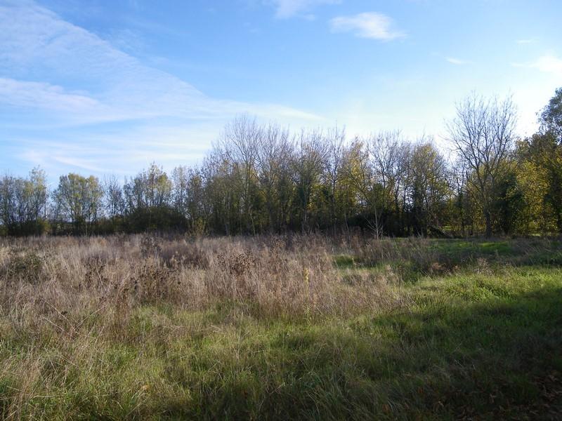 Image pour Vente Terrain à bâtir a Mauzé-Thouarsais 210000 euro